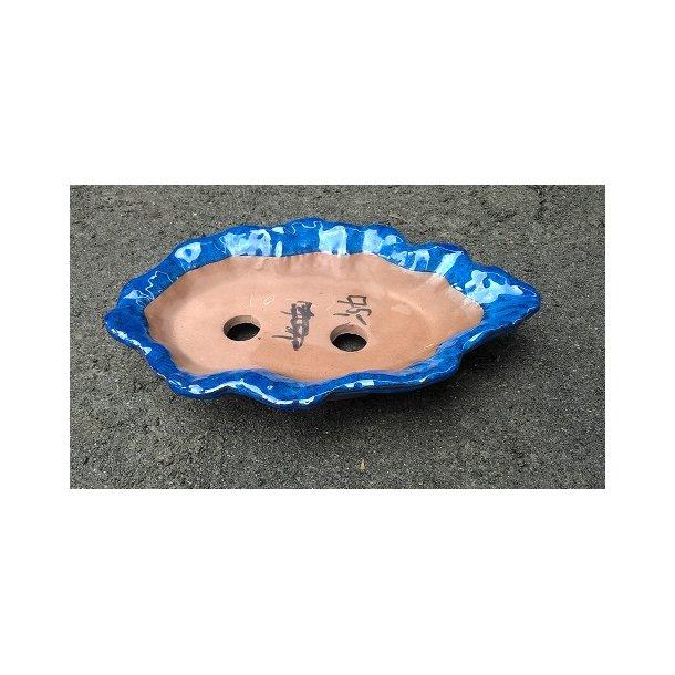 Bonsai skål - Glaserede, Blå, Polygon form, Lav