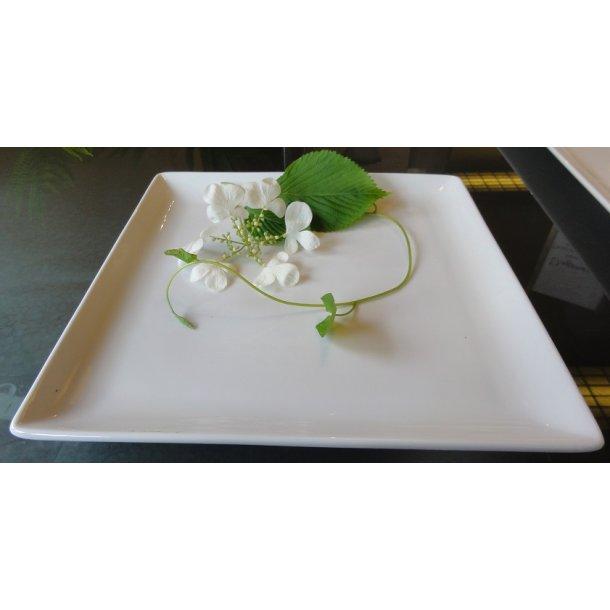 Glaseret firkantet hvid Sushi tallerken 23,5cm
