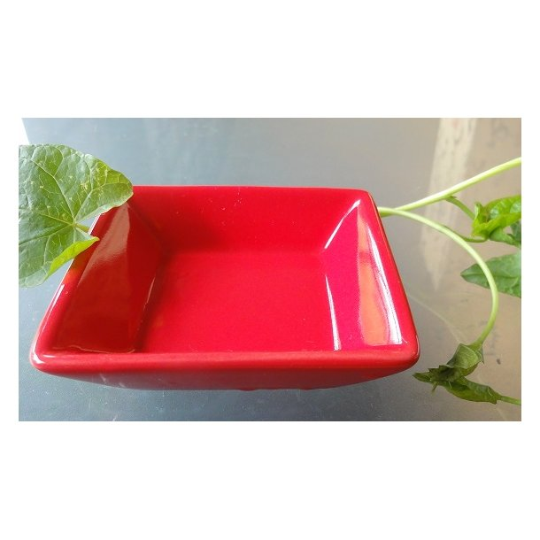 Firkantet rød Soja skål 6cm